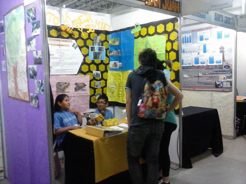 Besucher der Schülermesse Tecnópolis informieren sich über das Bieneprojekt, für das die Schüler aus San Juan einen Preis mit nach Hause nehmen werden.