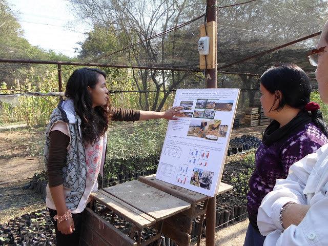 Miriam erklärt an einer Schautafel die Aufzucht von Pflanzen im Schulgarten und auf dem Versuchsfeld